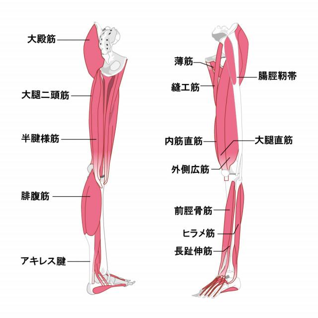 踵の痛みの対処法は?